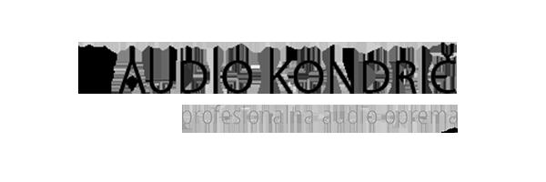 Profesionalna audio oprema
